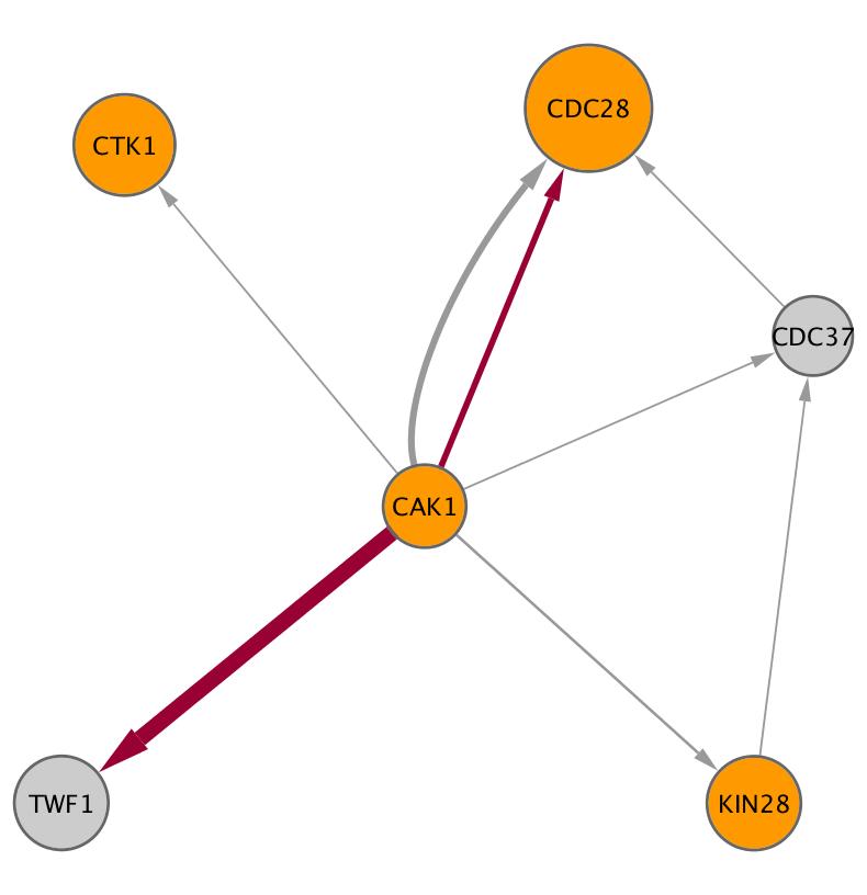 CAK1 (YFL029C)