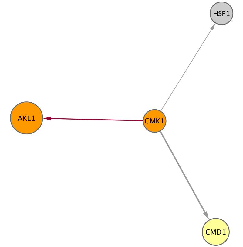 CMK1 (YFR014C)