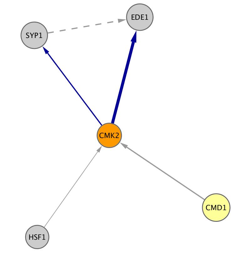CMK2 (YOL016C)