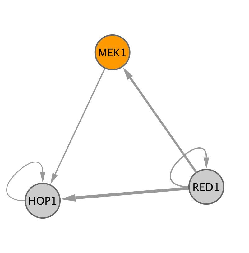 MEK1 (YOR351C)
