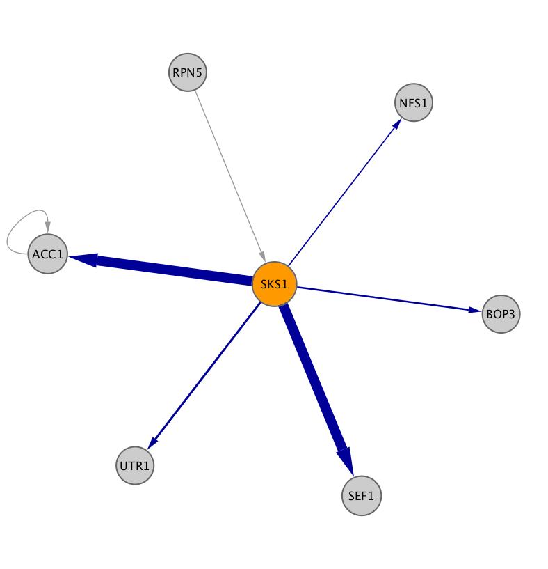 SKS1 (YPL026C)